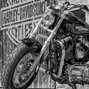 Motoröl für Harley-Davidson